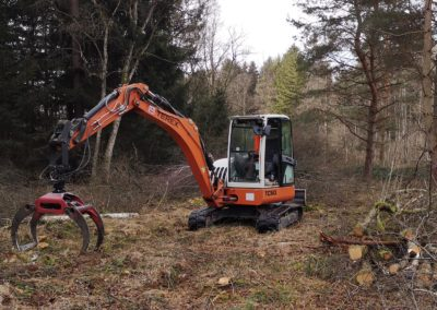 Landschaftspflege 01 | Kollmannsberger Prien | Forstbetrieb Brennholz Winterdienst
