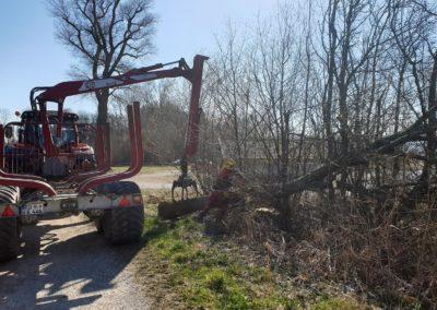 Landschaftspflege 02 | Kollmannsberger Prien | Forstbetrieb Brennholz Winterdienst