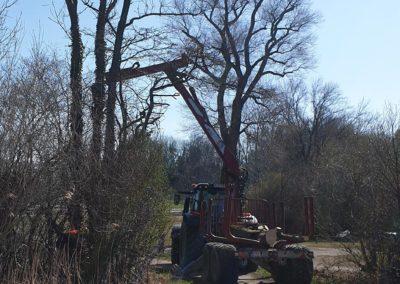 Landschaftspflege 04 | Kollmannsberger Prien | Forstbetrieb Brennholz Winterdienst